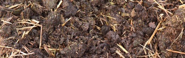 Trouble Free Compost