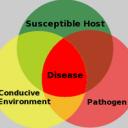 Plant Disease Prevention