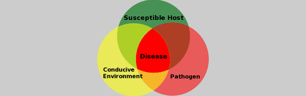 Plant Disease Prevention